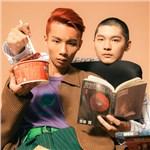 夜猫组(Leo王+春艳) 歌手图片