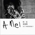 张惠妹的专辑 你在看我吗