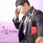 孔朝的专辑 伤了爱情的玫瑰(单曲)