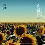 汪峰的专辑 向阳花 (单曲)
