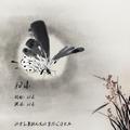 杂锦合辑7的专辑 非乐(EP)