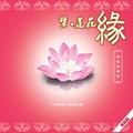 何禹萱的专辑 梦 莲花缘