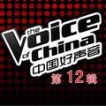 中国好声音的专辑 中国好声音 第一季 第十三期