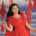 我的中国节(单曲)