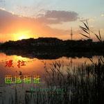 西域明珠(单曲)