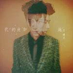 王博文的专辑 我的他加她(单曲)