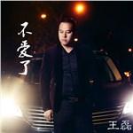 DJ王磊的专辑 不爱了