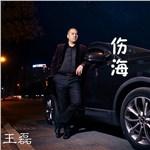 DJ王磊的专辑 伤海