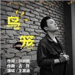 王晟涵的专辑 鸟笼