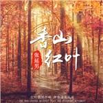 张延男的专辑 香山红叶