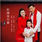 王丽达的专辑 红墙连万家