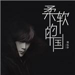 简弘亦的专辑 柔软的国