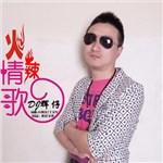 dj辉仔 的专辑 火辣情歌