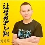 刘习军的专辑 让梦想飞翔