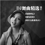 钟芹的专辑 钟芹DJ舞曲辑