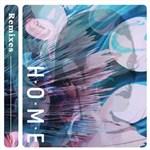 王诗安的专辑 Home(Remixes)