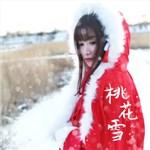 风小筝的专辑 桃花雪