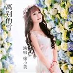 徐小美的专辑 离别的雪