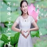王小爱的专辑 阿妈佛心上的一朵莲