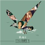 龙梅子的专辑 海鸥飞