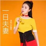 张鑫雨的专辑 一日夫妻
