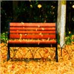 吕恒的专辑 消逝的回忆(An Evanescent Memory)