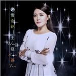 王晓燕的专辑 雪花