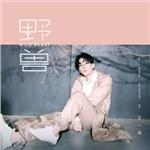 王一浩的专辑 野兽