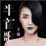 王蓉的专辑 半首歌
