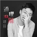 王佳宁的专辑 道理没用