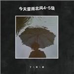 今天雷雨北風4-5級