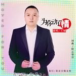 王斌的专辑 为你动了情