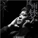 王振的专辑 风雨梦