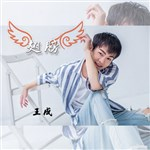 王成的专辑 翅膀