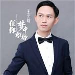 王元峰的专辑 在你梦中停留