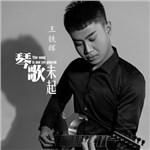 王铁辉的专辑 琴歌未起