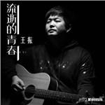 王振的专辑 流逝的青春