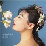 张玉凤的专辑 弯弯的月牙泉