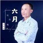 金瑛强的专辑 六月的玫瑰