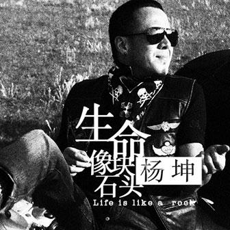 生命像块石头(单曲)