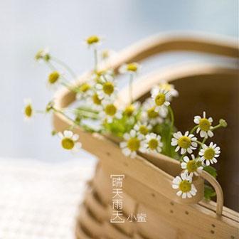 晴天雨天(单曲)