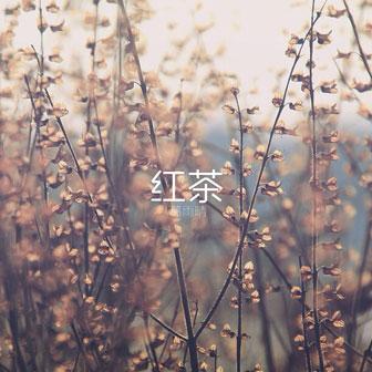 红茶(单曲)