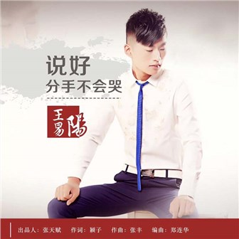 【转编】:王易阳歌曲(1)——《说好分手不会哭》(音画图文) - 文匪 - 文匪的博客