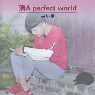 清A perfect world