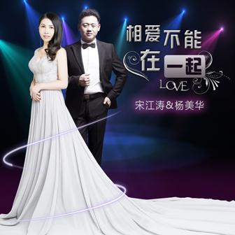 相爱不能在一起 - 宋江涛&杨美华