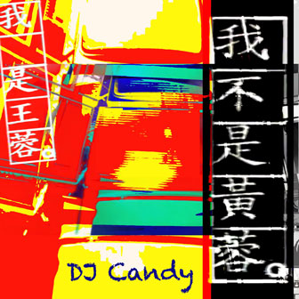 我不是�S蓉(DJcandy Mix)